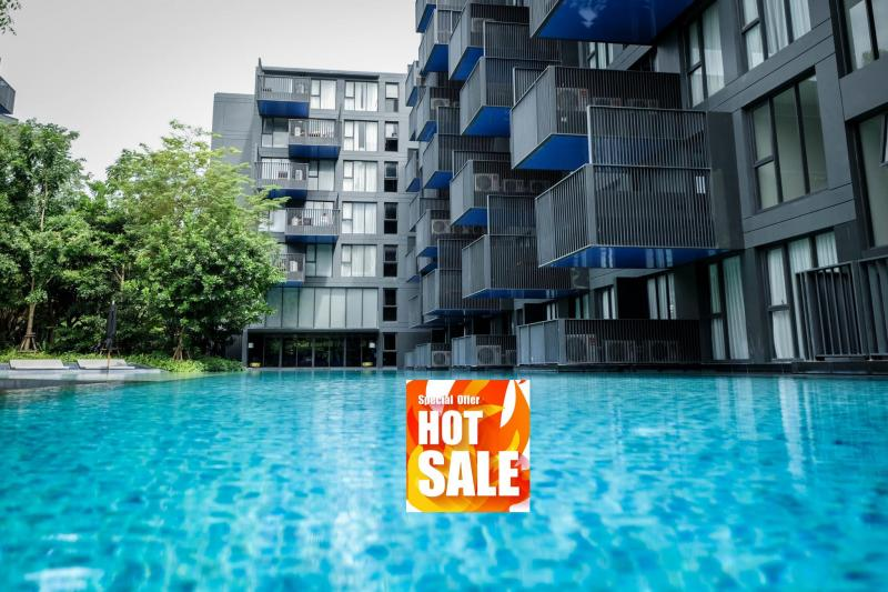 Picture Only 3,9 M THB /1 Bedroom Condo for Sale at the Deck Patong