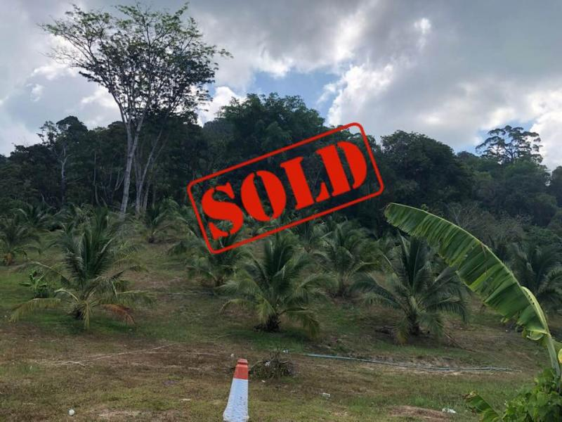 Picture Hot Deal: Land for sale in Kamala, Phuket with an unbeatable price - Freehold