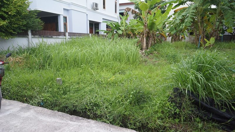 Photo Petite parcelle de terrain à vendre à Rawai, Phuket