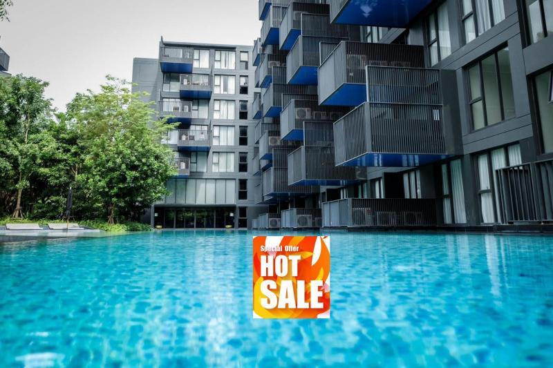 Picture Only 3,99 M THB - 1 Bedroom Condo for Sale at the Deck Patong