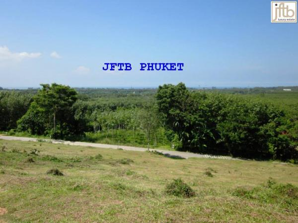 Picture  Sea View Land for Sale in Phuket, Mai Khao