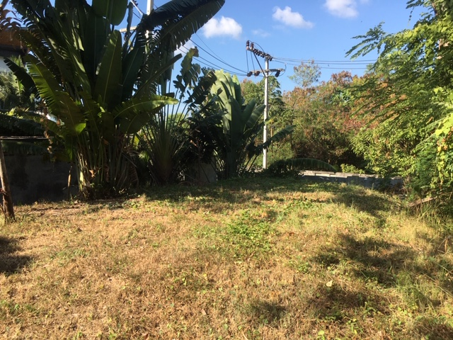 Picture 2980 m2 of land for sale in a residential location of Rawai, Phuket