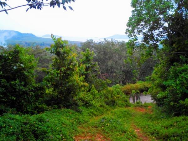 Photo Terrain de 3200 m2 à vendre à Yamu hills, Phuket, Thailande