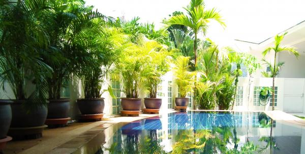 Picture Phuket luxury villa for rent in Thalang - Paklok