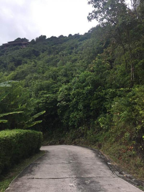 Photo terrain à vendre sur la route des Millionnaires à Kamala