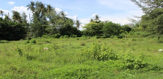 Photo Terrain de 4400 m2 à vendre à Bang Tao, Phuket, Thaïlande