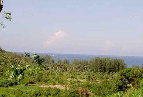 Picture Phuket - Land with sea view for sale in Nai Thon