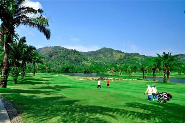 Picture Plots of land for sale in Kathu, Phuket, Thailand
