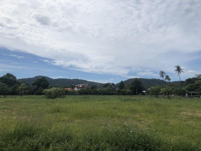 Picture Rawai Saiyuan area land plot of 3105 Sqm for sale
