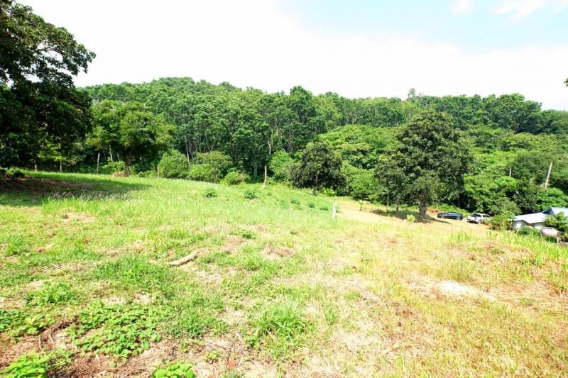 Picture Nai Harn plot for sale with a size of 5376 m2