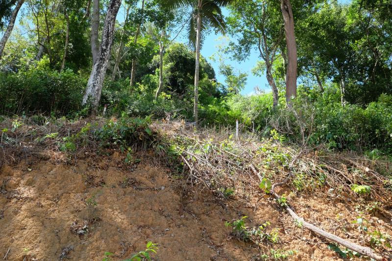 Photo Terrain à vendre à Phuket Kathu