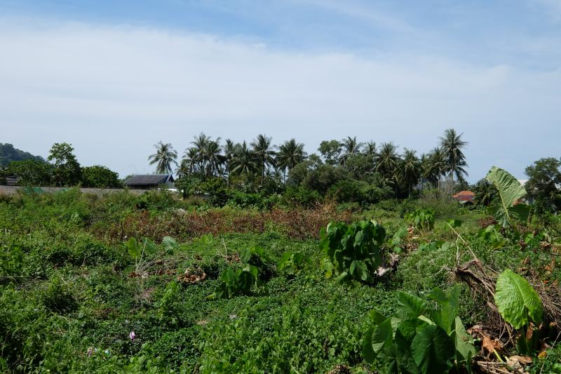 Photo Phuket land for sale in Bang Tao Beach with full Chanote