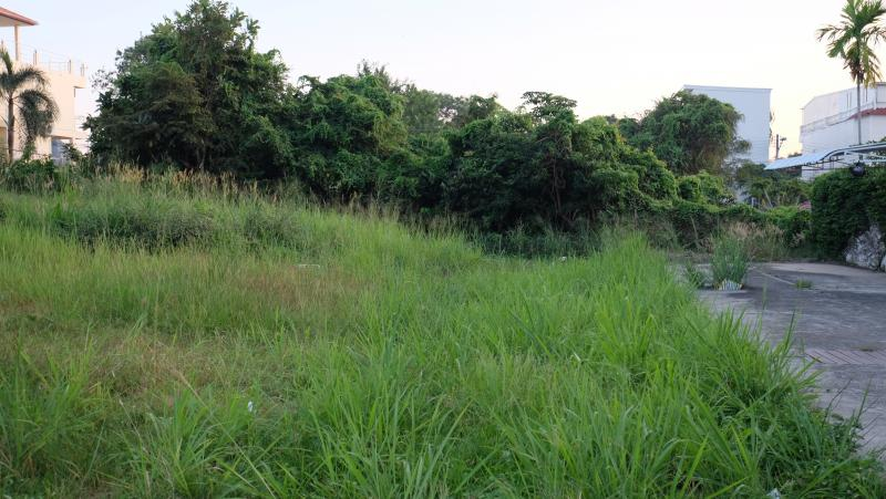 Photo Phuket land for sale in prime location of Rawai
