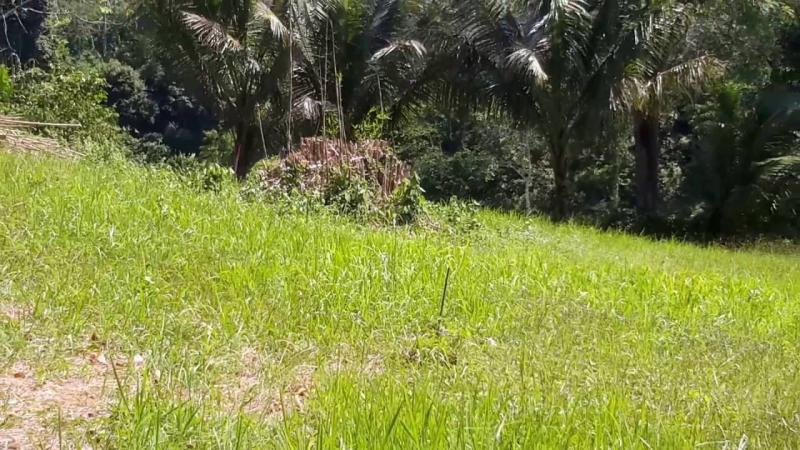 Photo Plot for sale in Laguna, Phuket